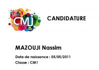 Nassim MAZOUJI Catégorie Liberté